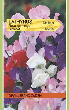Reuk- of siererwt Lathyrus odoratus Royal Gemengd