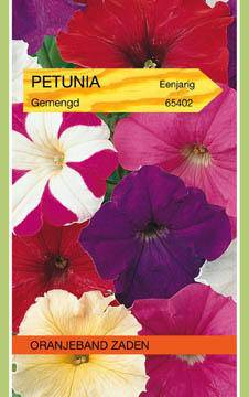 Petunia Petunia Multiflora Gemengd